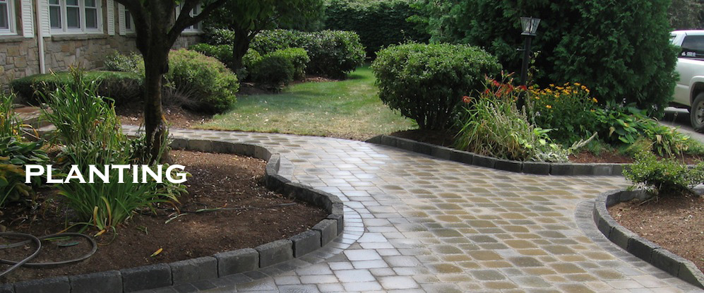 Landscape Design Holden Ma