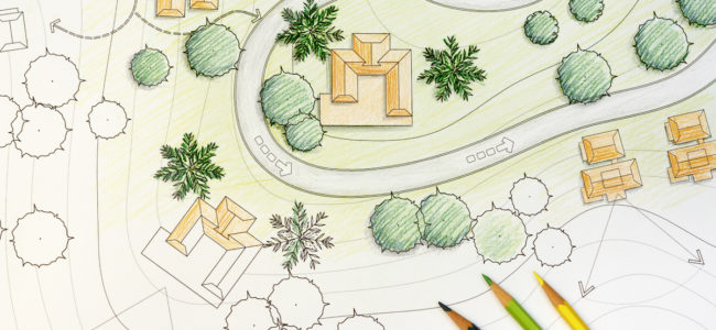 photo of a landscape design plan