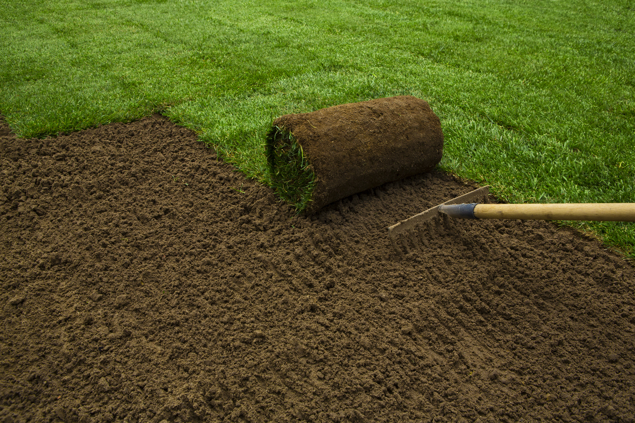 photo of a lawn installation with sod